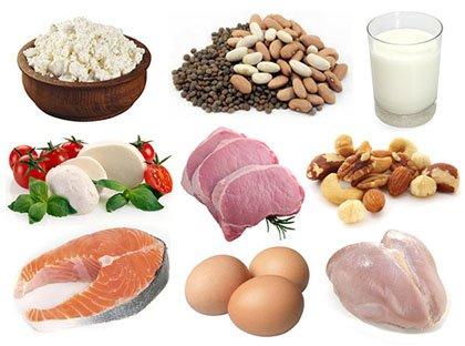 Reacção do organismo ao excesso ou à carência de alimento