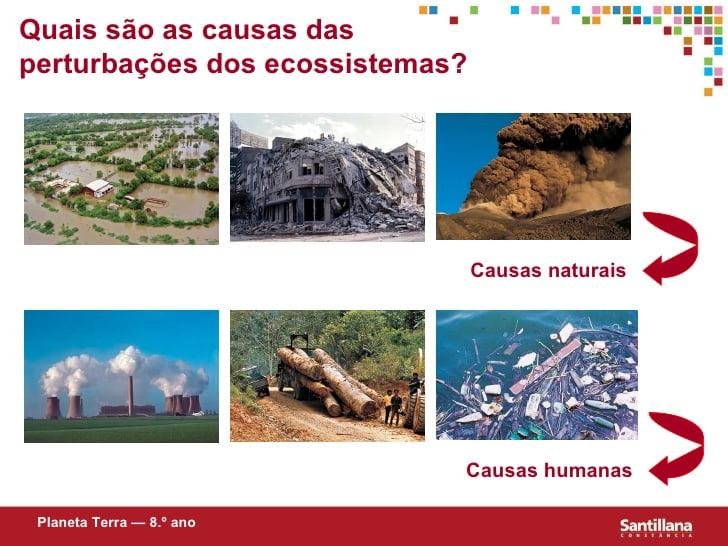 Perturbações no equilibrio dos ecossistemas