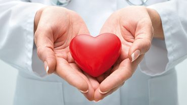 Cuidados a ter com o sistema cardiovascular – Ficha de Trabalho (1) – Soluções