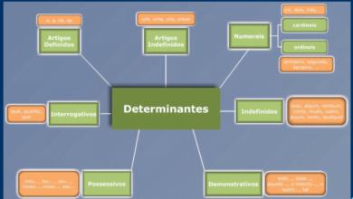 Ficha de Trabalho– Classe de palavras – Determinantes (2)